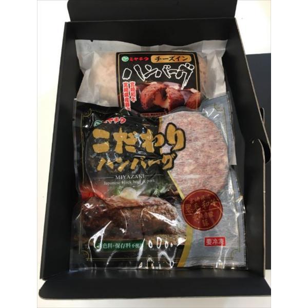 ハンバーグ 肉加工品 ギフト セット 詰め合わせ 贈り物 贈答 産直 宮崎 「ミヤチク」こだわりハンバーグセット 内祝い 御祝 お祝い お礼 贈り物 御礼 食品 産地