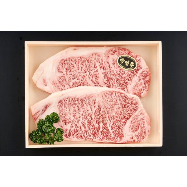 牛肉 ステーキ 宮崎牛 サーロインステーキ200g×2枚 ギフト セット 詰め合わせ 贈り物 贈答 産直 内祝い 御祝 お祝い お礼 返礼品 贈り物 御礼 食品 産地直送