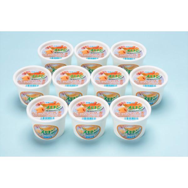 洋菓子 スイーツ 函館牛乳 クリーミーなメロンシャーベット10個セット ギフト セット 詰め合わせ 贈り物 贈答 産直 内祝い 御祝 お祝い お礼 返礼品 贈り物 御