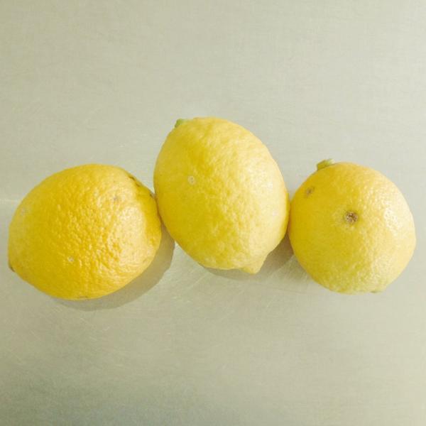【化学農薬・化学肥料不使用】国産 瀬戸内 レモン 5kg ( ノーワックス・防カビ剤不使用 ) 糖度の高い 広島 大長産 ( 訳あり ) ※クール便でお届け|neroli-shop|04
