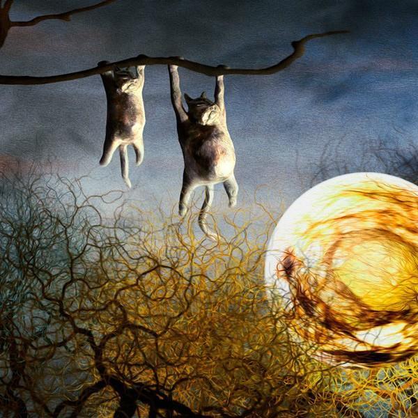 絵画「夜中のひなたぼっこ」 ジクレー版画 ヨーロッパで大人気 ネルバ作 114-245|nerva|02