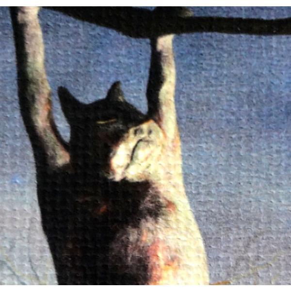絵画「夜中のひなたぼっこ」 ジクレー版画 ヨーロッパで大人気 ネルバ作 114-245|nerva|04