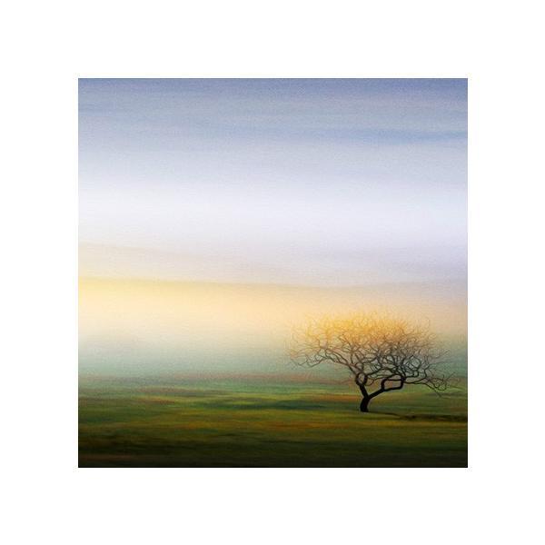 絵画「どこに向かっているんだろう」 ジクレー版画 ヨーロッパで大人気 ネルバ作 115-247|nerva|03