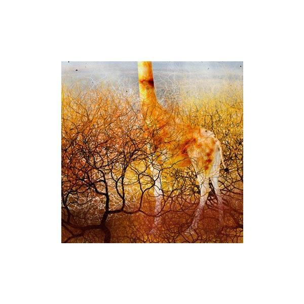 北欧絵画 「夜明けのひと飲み」ジクレー版画 ヨーロッパで大人気 ネルバ作 115-260|nerva|04