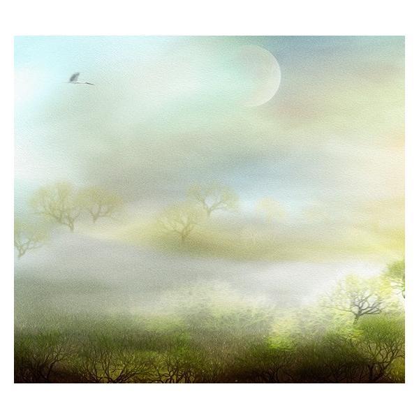 絵画 ネルバ作「霧のたちこめる朝」116-274 キャンバス・ジクレー版画|nerva|03