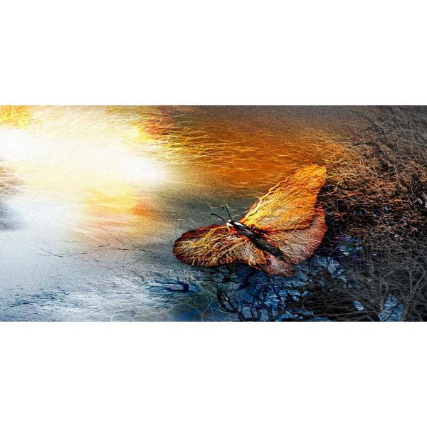 絵画 「朝の光射す」117-305 ネルバ作 ジクレー版画|nerva