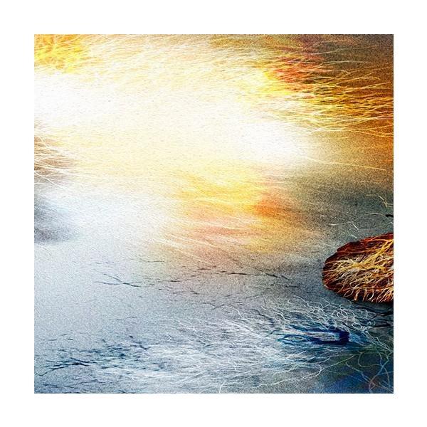 絵画 「朝の光射す」117-305 ネルバ作 ジクレー版画|nerva|03