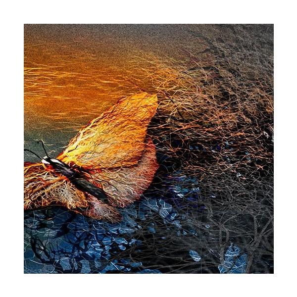 絵画 「朝の光射す」117-305 ネルバ作 ジクレー版画|nerva|04