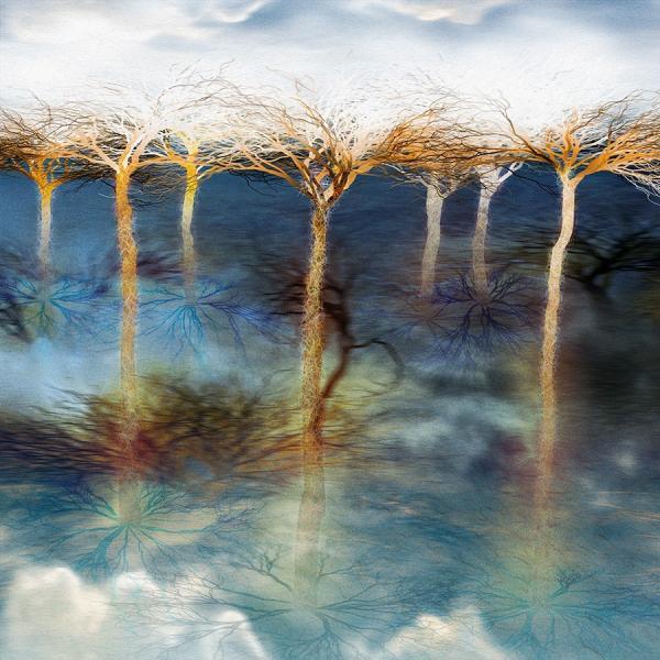 絵画 「てっぺんは乾いてる」118-308 ネルバ作 ジクレー版画|nerva
