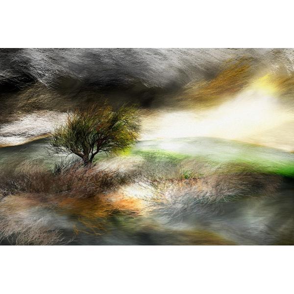 絵画 「嵐、来るかな?」118-309 ネルバ作 ジクレー版画|nerva