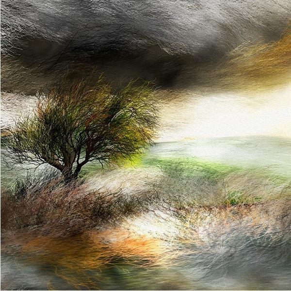 絵画 「嵐、来るかな?」118-309 ネルバ作 ジクレー版画|nerva|04