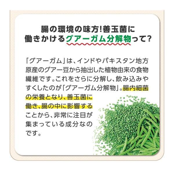 アイソカルサポート 腸活 プラス 6本セット NHS 食物繊維 便秘 血糖 高発酵|nestle|05