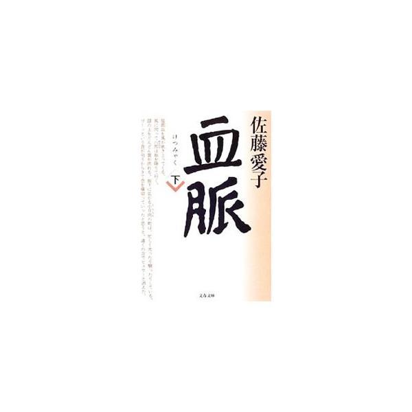 血脈下/佐藤愛子