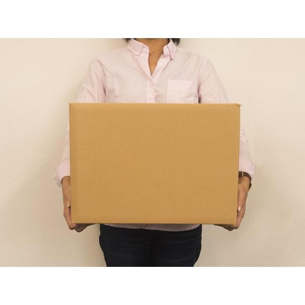 ダンボール箱 100サイズ 段ボール 引越し 購入 梱包 390x270x270mm(NO3)|new-pack|03