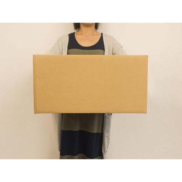 ダンボール箱 140サイズ 段ボール 引越し 購入 梱包 550x400x270mm(HS) new-pack 03