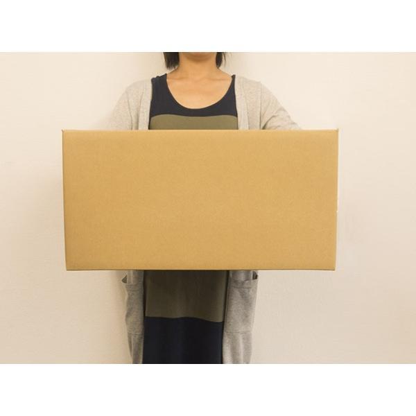 ダンボール箱 140サイズ 段ボール 引越し 購入 梱包 545x375x270mm(岡11)|new-pack|03