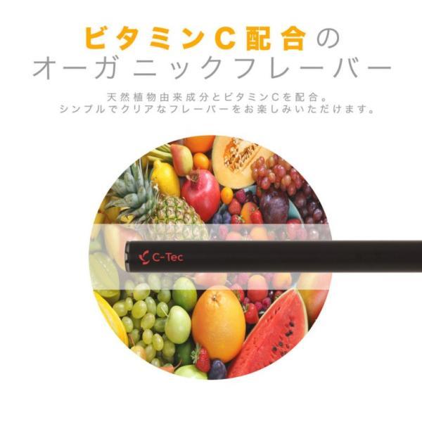 電子タバコ 使い捨て C-Tec STICK トロピカルフルーツ 禁煙グッズ newlogic-store 02
