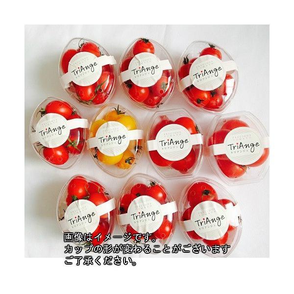 トマト ミニトマト 新鮮 生産者直送 赤と黄色のミニトマトが楽しめる10カップセット |next-triange