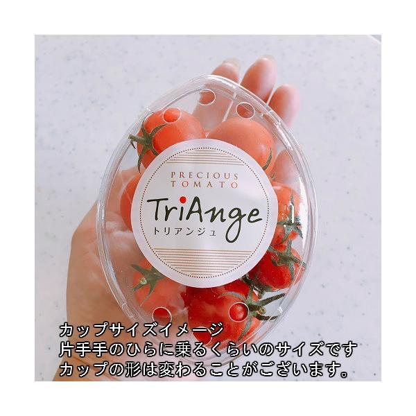 トマト ミニトマト 新鮮 生産者直送 赤と黄色のミニトマトが楽しめる10カップセット |next-triange|02