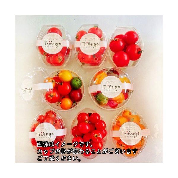 トマト ミニトマト 新鮮 生産者直送 カラフルトマトが入ったジュエリーボックスカップ入り8カップセット |next-triange