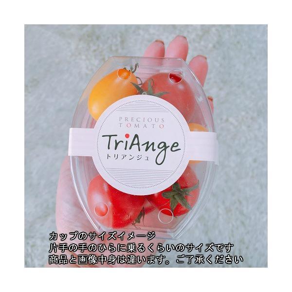 トマト ミニトマト 新鮮 生産者直送 カラフルトマトが入ったジュエリーボックスカップ入り8カップセット |next-triange|02