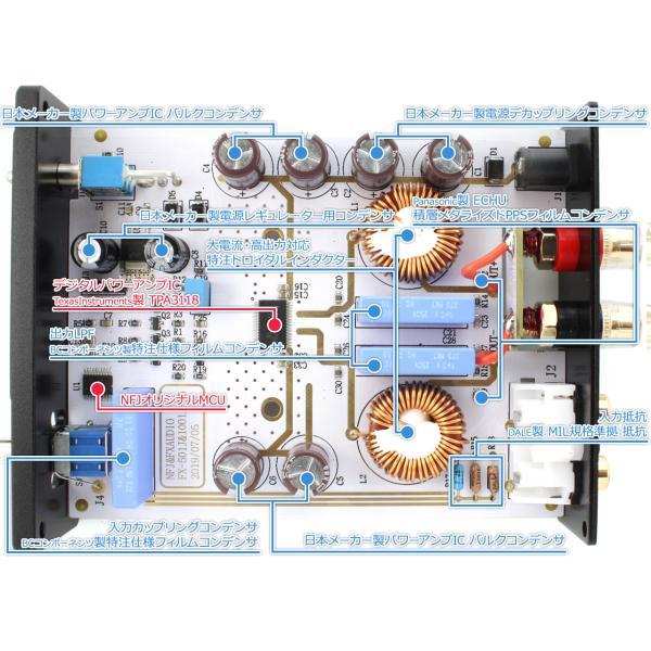 FX-AUDIO- FX-501J[チタンブラック] TPA3118デジタルアンプIC搭載 PBTL モノラル パワーアンプ  100W×1ch ParallelBTL|nfj|03