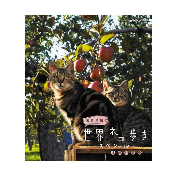 岩合光昭の世界ネコ歩き スペシャル 津軽の四季