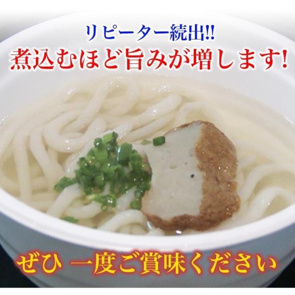 日南魚うどん ギフトセットC 5食分とおまけ付! 日南市漁協女性部|nichinan-tv|02