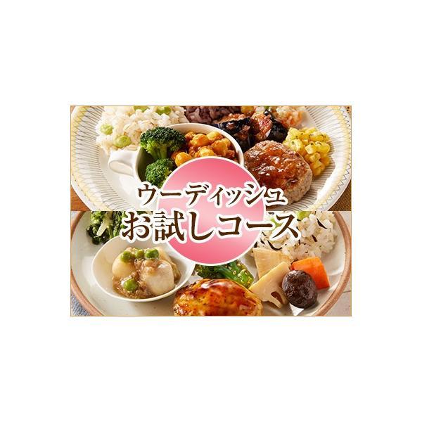 ウーディッシュお試し2食コース【冷凍】ニチレイフーズ
