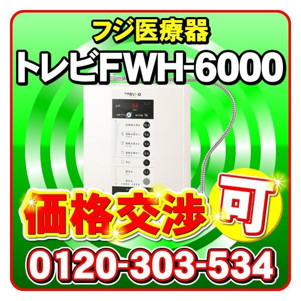 水素水生成器トリビFWH-6000