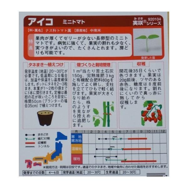 ミニトマト 種 アイコ  サカタ交配 サカタのタネ|nicoco|02