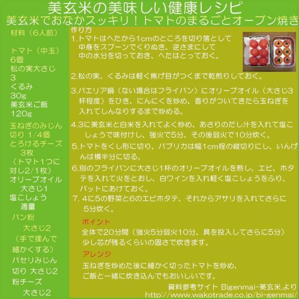 美玄米 ふっくらもちもち玄米食 450g×12本 nicology-store 03