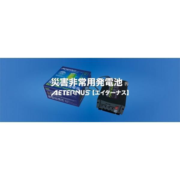 【ダブルエーホールディングス正規代理店】災害・非常用発電池『エイターナス』Aセット|nihonherz|03