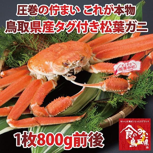 【ご予約】タグ付き松葉ガニ(茹で)大サイズ1枚800g前後