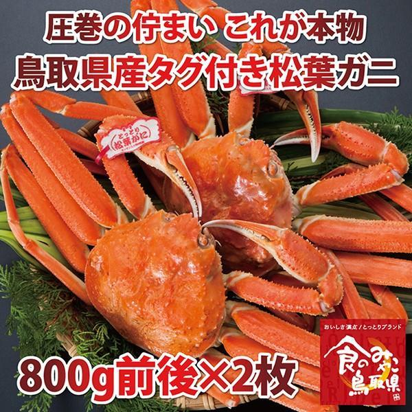 【ご予約】松葉ガニ タグ付き(茹で)大サイズ 2枚で1.6kg前後