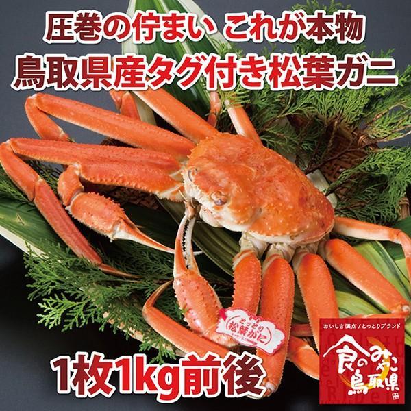【ご予約】タグ松葉ガニ(茹で ズワイガニ)特大サイズ1枚(活カニ時1kg前後)