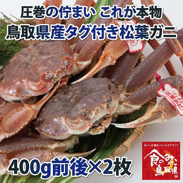 【ご予約】タグ付き松葉ガニ(活) 小サイズ2枚で800g前後