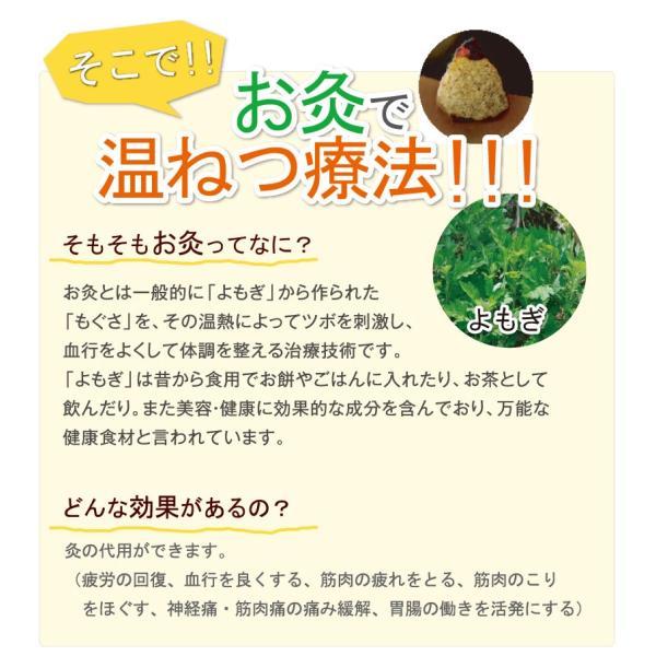 温ねつ灸|nihonriko2|02