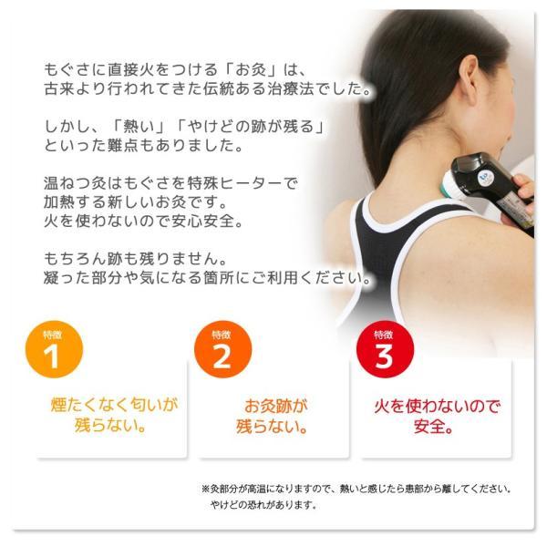 温ねつ灸|nihonriko2|03