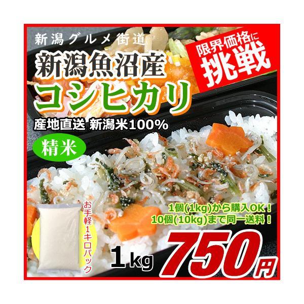 コシヒカリ 1キロ 魚沼産 新潟米 1kg  令和2年産 お米 新潟産 産地直送 米 コメ