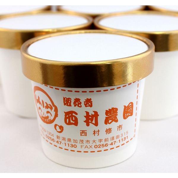 高級「宇治抹茶」のジェラート(120ml)10個セット 農園茶屋たばた(西村農園)製
