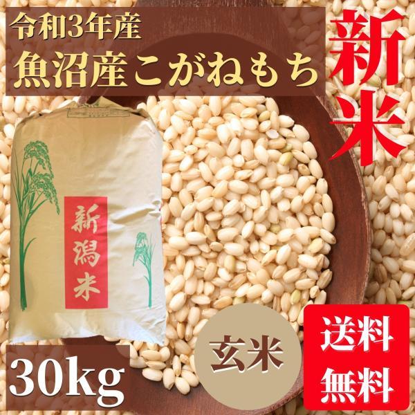 新米 もち米 魚沼産こがねもち 玄米 30kg 送料無料 業務用