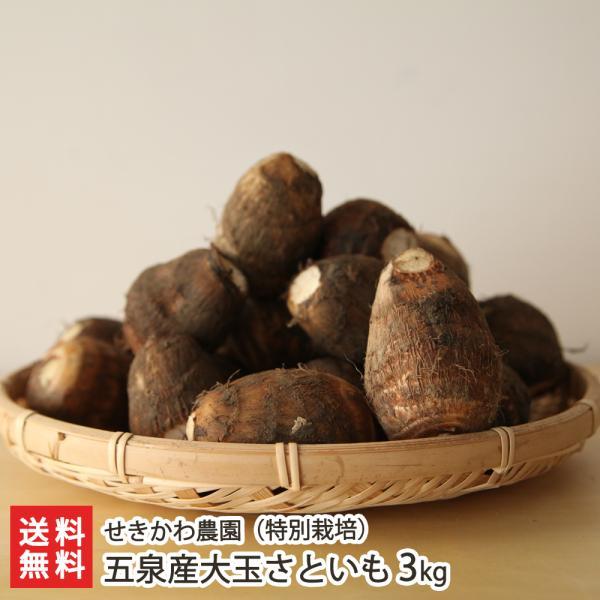 新潟五泉産大玉さといも(特別栽培)3kg せきかわ農園/送料無料