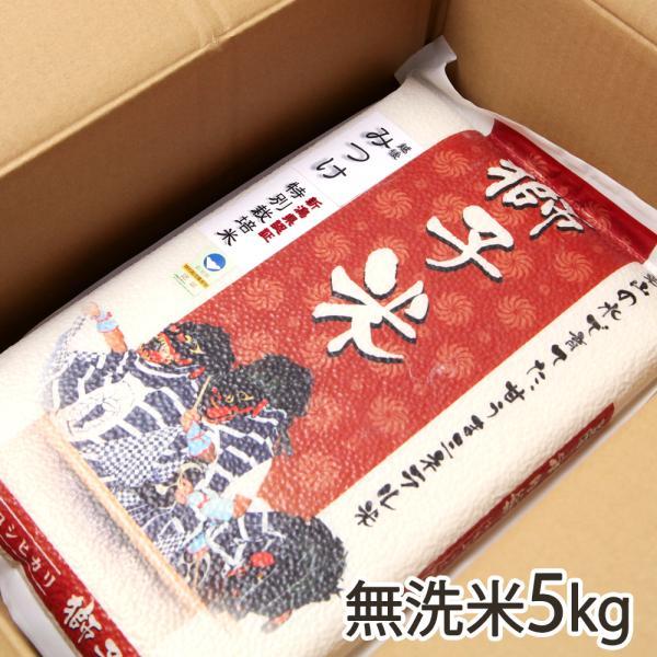 令和2年度米 新潟産 特別栽培米コシヒカリ「獅子米」無洗米5kg(真空パック)ファーム小栗山/御歳暮にも!ギフトにも!/のし無料/送料無料