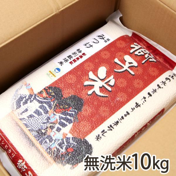 令和2年度米 新潟産 特別栽培米コシヒカリ「獅子米」無洗米10kg(5kg×2)真空パック ファーム小栗山/御歳暮にも!ギフトにも!/のし無料/送料無料
