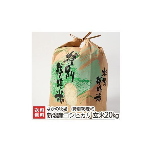 令和2年度米 新潟県新発田市 菅谷産コシヒカリ(特別栽培米)玄米20kg(10kg×2) なかの牧場/のし無料/送料無料