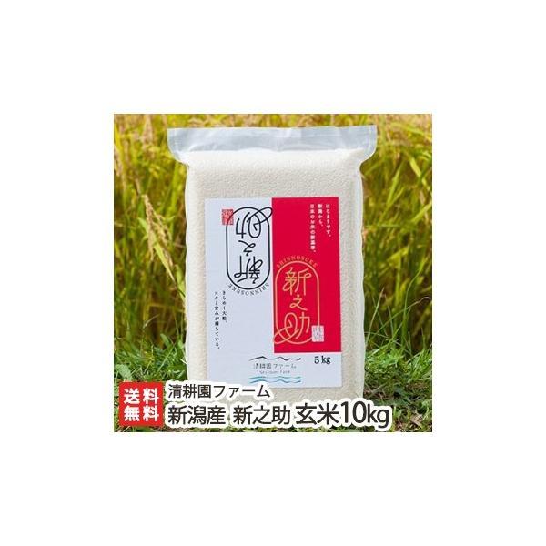 令和2年度米 新潟 糸魚川産「新之助」玄米 10kg(5kg×2)/御歳暮にも!ギフトにも!/のし無料/送料無料