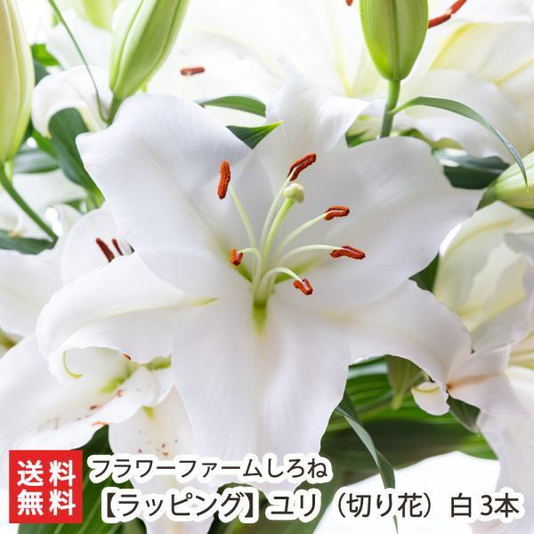 【ラッピング】ユリ(切り花)白 3本入/代金引換・NP後払い不可/送料無料