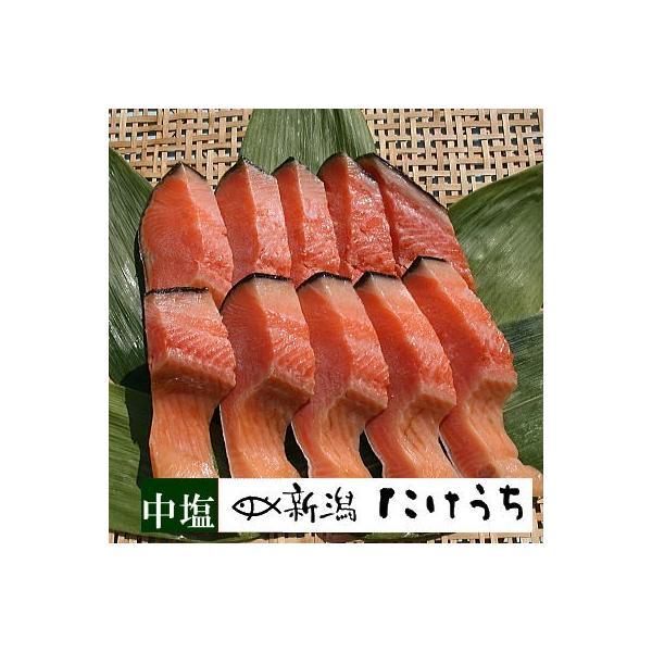きー181 本造ります中塩10切 トラウトサーモンを新潟で干し上げた伝統製法 鮭 お中元 冷凍食品 冷凍 魚 冷凍保存 高級 鮭 高級サーモン