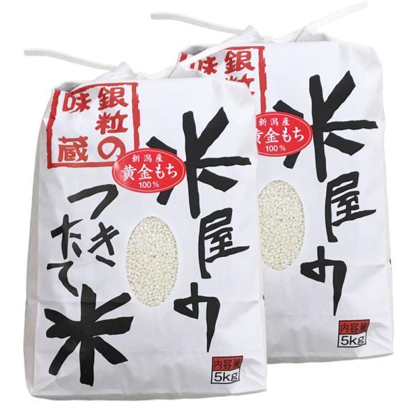 【もち米】新潟産こがねもち 黄金もち 白米 10kg(5kg×2個)